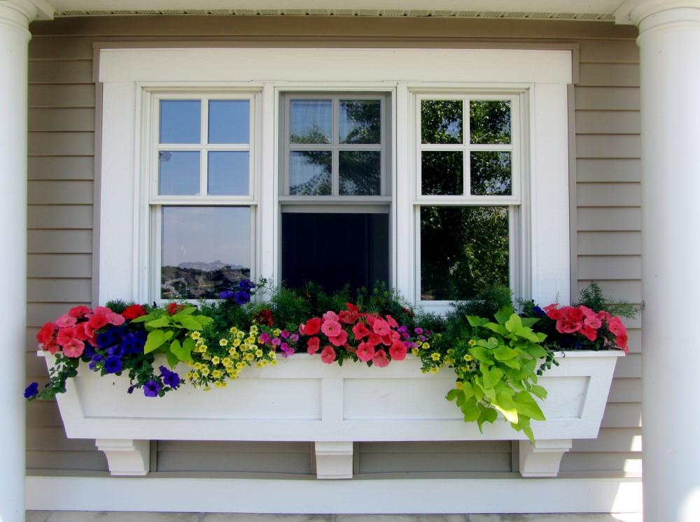 Photo By Volpe Enterprises, Inc.. Windows