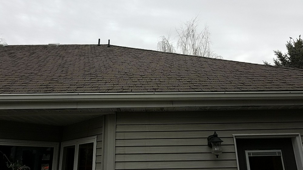 Photo By Rainguard Roofing.