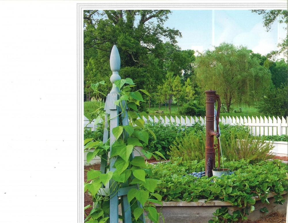 Photo By Troy Rhone Garden Design.