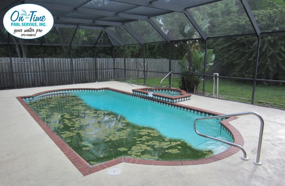 Photo By On - Time Pool Service, Inc	. On-Time Pool Service