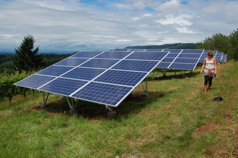 Photo By Sunbridge Solar, LLC. Chehalem Winery Solar Install