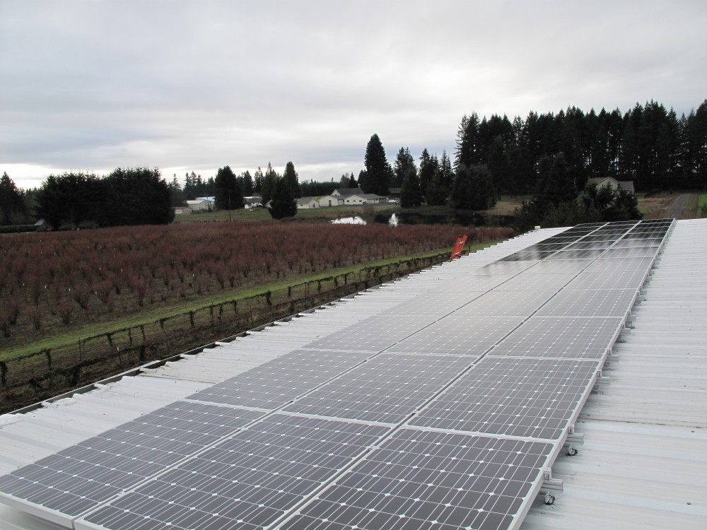 Photo By Sunbridge Solar, LLC. WA - Berry Best Farms