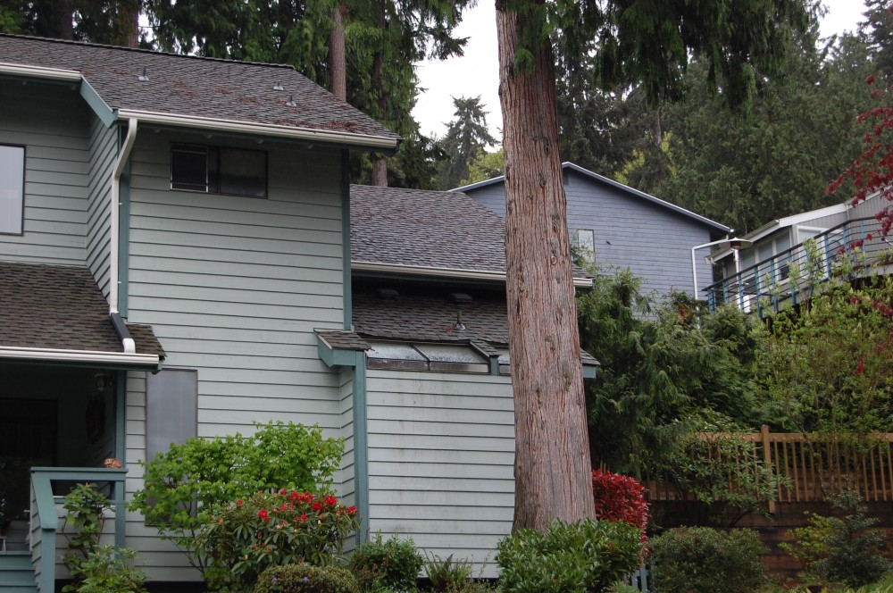 Photo By LeafGuard Of Seattle. LeafGaurd Gutter Systems