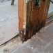 Photo by Crystal Exteriors LLC. ProVia doors and structural repair - thumbnail