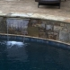Photo by Brown's Pools & Spas. Custom Designed Gunite Pool - thumbnail