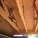 Photo by Ken Spears Construction, Inc..  - thumbnail