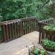 Photo by G&L and Sons Renovations. Deck Remodel - thumbnail