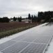 Photo by Sunbridge Solar, LLC. WA - Berry Best Farms - thumbnail