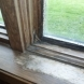 Photo by Degnan Design-Build-Remodel of Madison. Window Replacement - thumbnail