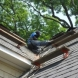 Photo by Fick Bros. Roofing & Exterior Remodeling Company. Pletsch Residence - thumbnail