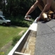 Photo by The Brothers that just do Gutters (New York).  - thumbnail