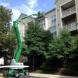 Photo by Prime Exteriors & Services LLC. Property Mamangement  - thumbnail