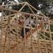 Photo by Gavigan Construction.  - thumbnail