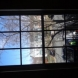 Photo by BRAX Roofing. Window replacement  - thumbnail